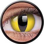 Colour VUE - Cateye
